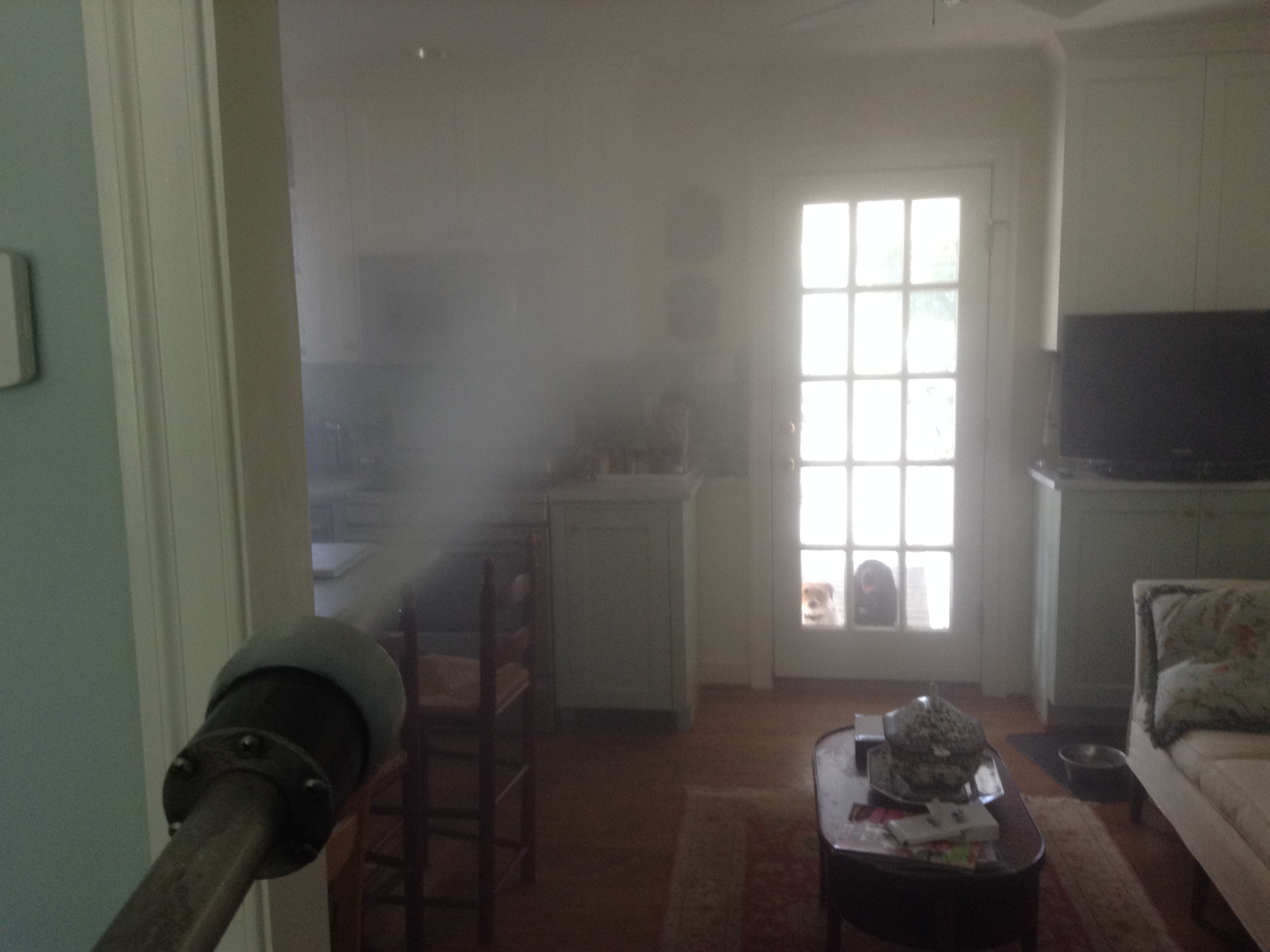 Residential Disinfection